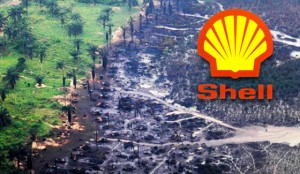 Photo from Sum of Us: Fighting for people over profits. http://sumofus.org/campaigns/shell-cleanup/